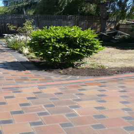 Center tree Paving Stones